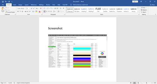 print screen image in word shrinked