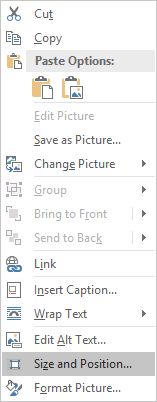 print screen image in word change size